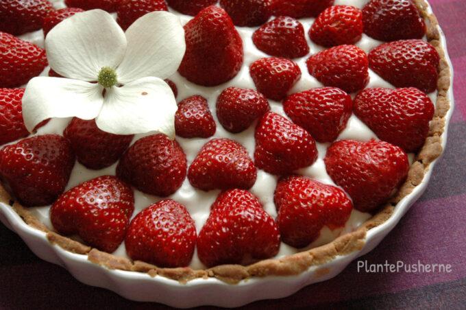 Glutenfri jordbærtærte vegansk