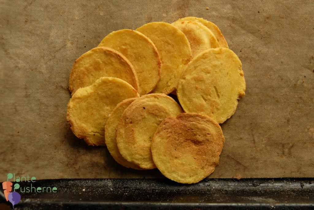 fedtfri chips