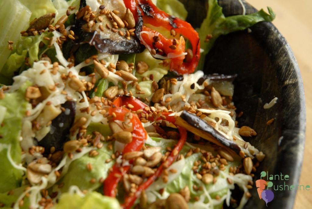 salat med soyaristede kerner