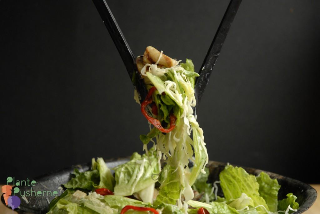Sprød grøn salat med stegte auberginer