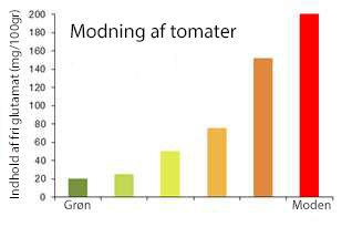 glutamat i tomater