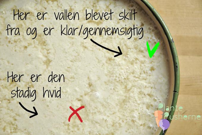 hvordan skiller man sojamælk