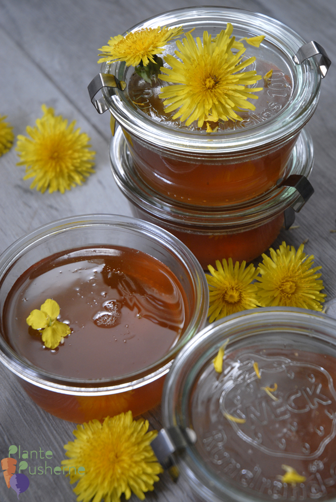 Dandelion honey