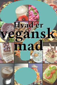 Hvad er vegansk mad